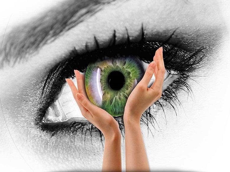 5 گیاه مفید برای بینایی