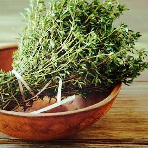 خواص گیاه آویشن چیست