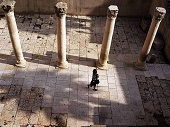 آثار باستانی که به زودی از بین می روند