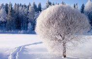 جملات زیبا در مورد زمستان