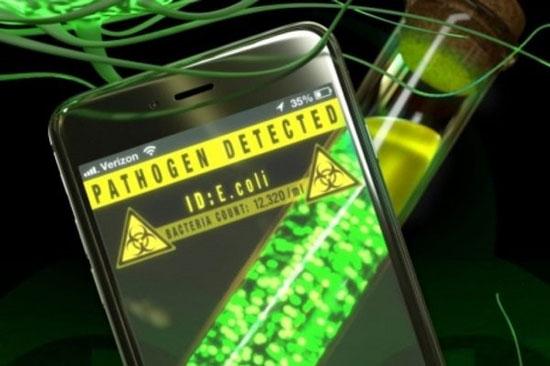 شناسایی سریع انواع باکتریها با اپلیکیشن موبایل