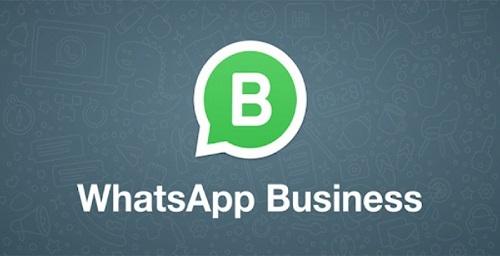واتساپ بیزینس چیست و چه تفاوتی با واتساپ معمولی دارد ؟