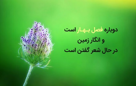 جملات زیبای بهار